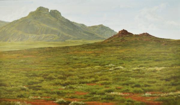 landscape-finished-600x351